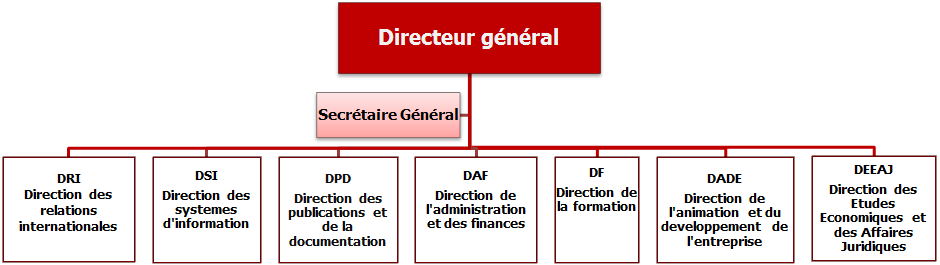 organigramme_caci_fr2.png